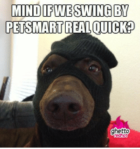 """<p><strong>Petsmart robbery</strong></p><p><a href=""""http://www.ghettoredhot.com/dog-meme-petsmart/"""">http://www.ghettoredhot.com/dog-meme-petsmart/</a></p>: MIND IFWESWING BY  PETSMART REAL QUICK?  ghetto <p><strong>Petsmart robbery</strong></p><p><a href=""""http://www.ghettoredhot.com/dog-meme-petsmart/"""">http://www.ghettoredhot.com/dog-meme-petsmart/</a></p>"""