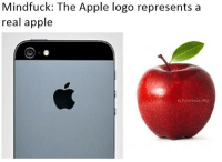 Apple, Memes, and Lowkey: Mindfuck: The Apple logo represents a  real apple  G PolarSaurusRex Lowkey I'm only just realising that... Follow me for more! (@PolarSaurusRex)