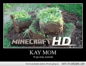 Kay Momhttp://omg-humor.tumblr.com: MINECRAFT HD  ΚΑΥ ΜOM  I'll go play outside  TASTE OFAWESOME.COM  You're probably better off not going to Kay Momhttp://omg-humor.tumblr.com