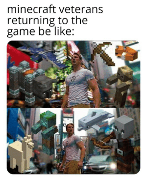 Everyone in 2019: minecraft veterans  returning to the  game be like: Everyone in 2019