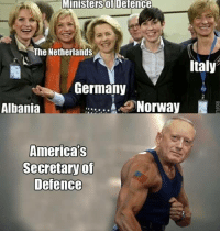 Memes, Germany, and Netherlands: Ministers Defence  The Netherlands  Italy  Germany  Norway  Albania  America's  Secretaryof  Defence America-Devil82