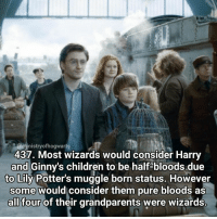 Bloods, Memes, and The Weekend: @ministry of hogwarts  437. Most wizards would consider Harry  and Ginny's children to be half-bloods due  to Lily Potter's muggle born status. However  some would consider them pure bloods as  all four of their grandparents were wizards. This is one of my favourite facts because it's really interesting! Qotd - What are your plans for the weekend? Carina Mae x Fc - 80.1k @maelovesbooks @carinapotter