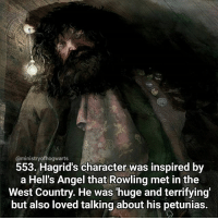 It's a dark image today but I love the illustration! Good luck to everyone with exams at the moment! Qotd - Do you know anyone that reminds you of a particular character? Carina Mae x Fc - 86.7k @maelovesbooks @carinapotter: @ministry of hogwarts  553. Hagrid's character was inspired by  a Hells Angel that Rowling met in the  West Country. He was huge and terrifying'  but also loved talking about his petunias. It's a dark image today but I love the illustration! Good luck to everyone with exams at the moment! Qotd - Do you know anyone that reminds you of a particular character? Carina Mae x Fc - 86.7k @maelovesbooks @carinapotter