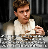 Memes, Prince, and London: ministry  Robert Knox who  played Marcus  466 Belby in Harry Potter and the Half  oi hogwarts  blood Prince was stabbed to death in  2008 outside a bar in London age 18 I didn't know this until today and it's really sad. Qotd - Who would you have taken to Slughorns Christmas party? Carina Mae x Fc - 83.8k @maelovesbooks @carinapotter