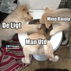 Barcelona, Football, and Memes: Mino Raiola  f Troll Football  OTheFootballTroll Turns out De Ligt & Mino Raiola used Man Utd just to get a better deal from Barcelona. Haven't seen that one before. https://t.co/2hMXlT1gj9
