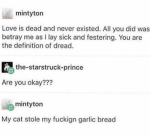 me🍞irl by tigerstewmc FOLLOW HERE 4 MORE MEMES.: mintyton  Love is dead and never existed. All you did was  betray me as I lay sick and festering. You are  the definition of dread.  the-starstruck-prince  Are you okay???  mintyton  My cat stole my fuckign garlic bread me🍞irl by tigerstewmc FOLLOW HERE 4 MORE MEMES.