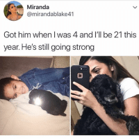 Cute, Memes, and Strong: Miranda  @mirandablake41  Got him when I was 4 and l'll be 21 this  year. He's still going strong Cute doggo