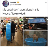 Dad, Dogs, and House: mireya  @Mireyadaa  My dad: I don't want dogs in this  House Also my dad: wholesome dad