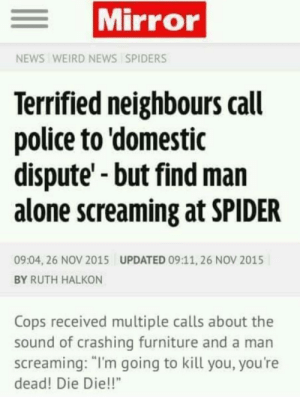 "Me irl: Mirror  NEWS WEIRD NEWS SPIDERS  Terrified neighbours call  police to 'domestic  dispute'-but find man  alone screaming at SPIDER  09:04, 26 NOV 2015  UPDATED 09:11, 26 NOV 2015  BY RUTH HALKON  Cops received multiple calls about the  sound of crashing furniture and a man  screaming: ""I'm going to kill you, you're  dead! Die Die!!"" Me irl"