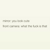😩 every time 😂 goodgirlwithbadthoughts 💅: mirror: you look cute  front camera: what the fuck is that 😩 every time 😂 goodgirlwithbadthoughts 💅
