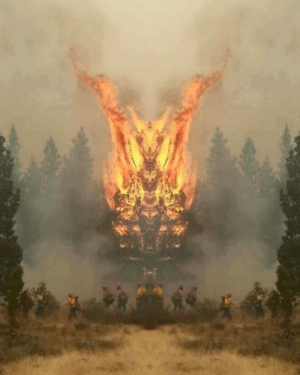 Mirrored forest fire image looks like crazy fire demon thing: Mirrored forest fire image looks like crazy fire demon thing
