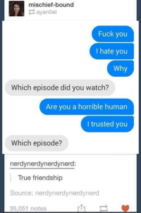 Fuck You, Fucking, and True: mischief-bound  P ayantiel  Fuck you  I hate you  Why  Which episode did you watch?  Are you a horrible human  I trusted you  Which episode?  nerdynerdynerdynerd:  True friendship  Source: nerdynerdynerdynerd  rt1  35,051 notes
