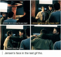 😂😂 ~Nathouツ: MISHAa YOU  mean gay like happy, right?  JENSEN: We're missing the gay angel.  ENSEN: Yeah, like happy  Jensen's face in the last gif tho. 😂😂 ~Nathouツ