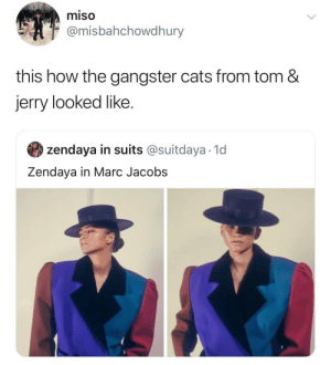 jerry: miso  @misbahchowdhury  this how the gangster cats from tom &  jerry looked like  zendaya in suits @suitdaya 1d  Zendaya in Marc Jacobs
