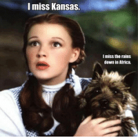 Africa, Memes, and Rain: mISS Kansas.  I miss the rains  down in Africa.