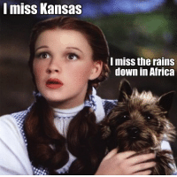 Africa, Rain, and Dank Memes: mISS Kansas  I miss the rains  down in Africa (G)old
