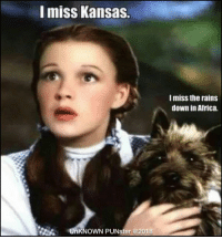 Africa, Memes, and 🤖: miss Kansas.  I miss the rains  down in Africa.  UnKNOWN PUNster @2018 Toto and Kansas were oz-some bands.  #UnKNOWN_PUNster