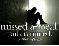 Gym, Memes, and Tumblr: missed a meal  bulk is ruined  tumblr. Cgm That feel :'(