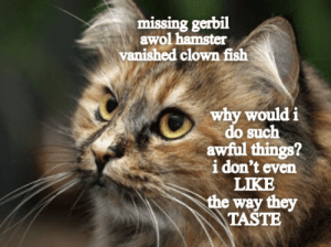 Fish, Hamster, and Gerbil: missing gerbil  awol hamster  vanished clown fish  why  do such  awful things?  i don't even  LIKE  the way they  TASTE  would i
