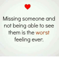 missing someone: Missing someone and  not being able to see  them is the worst  feeling ever.