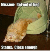 Mission Get out of bed - cat meme - http://www.jokideo.com/: Mission: Getout of bed  Status: Close enough Mission Get out of bed - cat meme - http://www.jokideo.com/