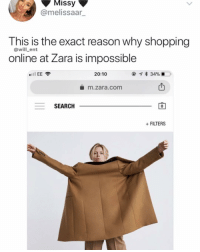 Lol, Memes, and Shopping: Missy  @melissaar_  This is the exact reason why shopping  @will_ent  online at Zara is impossible  20:10  * 34%  凸  m.zara .com  SEARCH  0  +FILTERS Lol