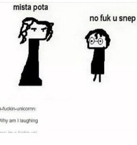 After rereading the sorcerers stone, i realized how much I hate snape: mista pota  a-fuckin-unicornn:  Why am I laughing  no fuk u snep After rereading the sorcerers stone, i realized how much I hate snape