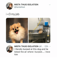 swipe for the second pic it's so cute: MISTA THUG ISOLATION  @fairdefeat  i<3 my job  MISTA THUG ISOLATION @f...-22h ﹀  i literally burped at this dog and he  licked the air where i burped... i love  him swipe for the second pic it's so cute