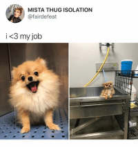 Before and after finals • Follow @savagememesss for more posts daily: MISTA THUG ISOLATION  @fairdefeat  i <3 my job Before and after finals • Follow @savagememesss for more posts daily