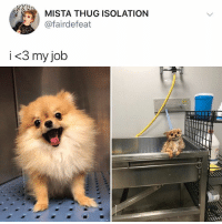 ... where can I get this job what job is this: MISTA THUG ISOLATION  @fairdefeat  i <3 my job ... where can I get this job what job is this