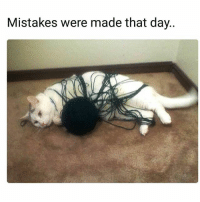 Memes, Mistakes, and 🤖: Mistakes were made that day.. Everyday.
