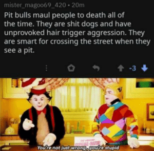 Quit hating on pitbulls!: mister_magoo69_420 20m  Pit bulls maul people to death all of  the time. They are shit dogs and have  unprovoked hair trigger aggression. They  are smart for crossing the street when they  see a pit.  t-3  WE-INATOR  You're not just wrong, youre stupid Quit hating on pitbulls!