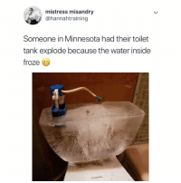 Memes, Minnesota, and Water: mistress misandry  @hannahtraining  Someone in Minnesota had their toilet  tank explode because the water inside  froze I say do you still want that visa??? krakstv visa coldweather