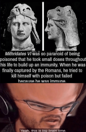 Life, Yeah, and Brain: Mithridates VI was so paranoid of being  poisoned that he took small doses throughout  his life to build up an immunity. When he was  finally captured by the Romans, he tried to  kill himself with poison but failed  hecause he was immune.  Yeah, this is big brain time Just a little test
