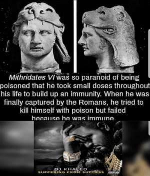 DJ Khaled, Life, and Dank Memes: Mithridates VI was so paranoid of being  poisoned that he took small doses throughout  his life to build up an immunity. When he was  finally captured by the Romans, he tried to  kill himself with poison but failed  hecause he was immune.  DJ KHALED  SUFFERING FROM SUCCESS  ARENTAL  ADVISORY  EXPLICIT CONTENT Not area 51