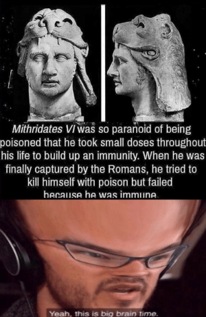 Life, Yeah, and Brain: Mithridates VI was so paranoid of being  poisoned that he took small doses throughout  his life to build up an immunity. When he was  finally captured by the Romans, he tried to  kill himself with poison but failed  hecause he was immune  Yeah, this is big brain time. Worse luck than I have