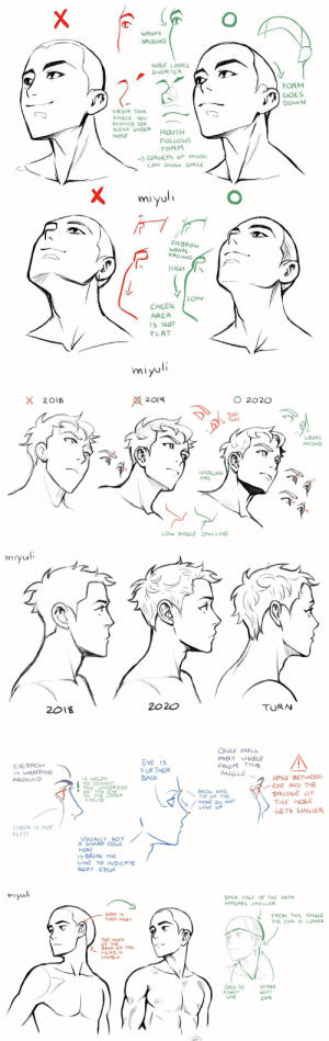 miyuliart: Some head related art notes.I hope some of these are a bit helpful.Patreon / Gumroad: miyuliart: Some head related art notes.I hope some of these are a bit helpful.Patreon / Gumroad