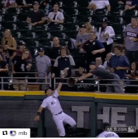 Adam Engel with the right angle on this robbery 😳 (via @mlb): MLB.com  ARDA  Lmlb Adam Engel with the right angle on this robbery 😳 (via @mlb)