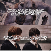 Memes, Troll, and Trolling: MMAEREAREsoME THINGS YOU  CAN TSHARE WITHOUT ENDING  UPLIKING EACH OTHER  @SLU  IG  AND KNOCKING OUT A TWELVE FOOT  MOUNTAIN TROLL IS ONE OF TAEM. • What's your favorite quote from any of the Harry Potter books?