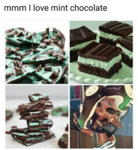 Mint is fucking good - - Leave a Like and follow me for more funny content! I really appreciate it :D -Taggs: Pokémon pokemonsun pokemonmoon meme smashbros ness nintendo switch f4f like: mmm I love mint chocolate Mint is fucking good - - Leave a Like and follow me for more funny content! I really appreciate it :D -Taggs: Pokémon pokemonsun pokemonmoon meme smashbros ness nintendo switch f4f like