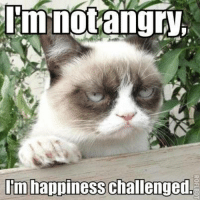 Happy Memes: mnotangry  I'm happiness challenged,