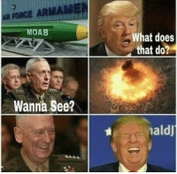 moab: MOAB  Wanna See?  What does  that do?  ald]