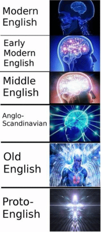 A new meme I home-brewed yesterday. Might need to do more of these Englisc memes!: Modern  English  Early  Modern  English  Middle  English  Anglo-  Scandinavian  Old  English  Proto  English A new meme I home-brewed yesterday. Might need to do more of these Englisc memes!