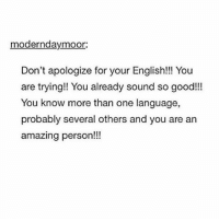 """Memes, Spanish, and Teacher: modernday moor:  Don't apologize for your English!!! You  are trying! You already sound so good!!!  You know more than one language,  probably several others and you are an  amazing person!!! for my spanish class we had to go to a Mexican restaurant and order in spanish and I was nervous so when I ordered I was like """"Voy a pedir tres tacos de chicken - oh I mean pollo"""" and then I didn't know how to say soft when he asked me hard or soft shell so I just pointed and the menu where it said """"soft shell"""" and whispered """"soft"""" very quietly so the waiter could hear me but not my spanish teacher who was grading me based off of if I ordered in spanish correctly"""
