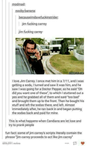 "Jim Carrey: modmad:  nooby-banana:  becauseimdavefuckinstrider:  jim fucking carrey  jim fucking carrey  SENORGEP.COM  Ilove Jim Carrey. I once met him in a 7/11, and I was  getting a soda, I turned and saw it was him, and he  saw I was going for a Doctor Pepper, so he said ""Oh  did you want one of these"", to which I stuttered out a  yes and he grabbed all of them and said ""too bad""  and brought them up to the front. Then he bought his  stuff and left the sodas there, and left. Almost  immediately after, he ran back in and began putting  the sodas back and paid for mine.  This is what happens when Candians are let lose and  try to prank people  fun fact: some of jim carrey's scripts literally contain the  phrase ""jim carrey proceeds to act like jim carrey  686,091 notes Jim Carrey"