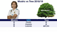 Goals, Memes, and Tree: Modric vs Tree 2018/19  o nolfoball  TrollFootball  Modric  0  0  0  opto  Goals  Assists  Leaves  Tree  0  0  227,721 Absent 😂👌