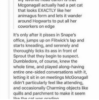 Ass, Dumbledore, and Girls: Mogonagall actually had a pet cat  that looks EXACTLY like her  animagus form and lets it wander  around Hogwarts to put all her  coworkers on edge  It's only after it pisses in Snape's  office, jumps up on Flitwick's lap and  starts kneading, and serenely and  thoroughly licks its ass in front of  Sprout that they begin to suspect.  Dumbledore, of course, knew the  whole time, and played along-having  entire one-sided conversations with it,  letting it sit in on meetings McGonagall  didn't particularly feel like attending,  and occasionally Charming objects like  quills and parchment to make it seem  liLo the nat wrac grading ••••••• has anyone read the embassy row series by Ally Carter? Currently reading 'take the key & lock her up' over halfway through it and I love it! I love this series, The Gallagher girls and heist society so much!