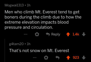 Thanks, I hate Mt. Everest: Mogwai1313 1h  Men who climb Mt. Everest tend to get  boners during the climb due to how the  extreme elevation impacts blood  pressure and circulation.  1.4k  Reply  g4tam20 1h  That's not snow on Mt. Everest  923 Thanks, I hate Mt. Everest