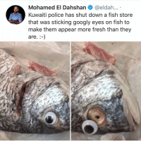 Fresh, Memes, and Police: Mohamed El Dahshan@eldah...  Kuwaiti police has shut down a fish store  that was sticking googly eyes on fish to  make them appear more fresh than they  are.-) Post 1172: would u eat a googley eyes fish??? I don't think I could!!