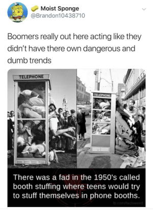 Dank, Dumb, and Memes: Moist Sponge  @Brandon10438710  Boomers really out here acting like they  didn't have there own dangerous and  dumb trends  TELEPHONE  TELEPHONE  There was a fad in the 1950's called  booth stuffing where teens would try  to stuff themselves in phone booths.  fb.com/factsweird Hmmmm 🤔 by heresafuckinginsult MORE MEMES